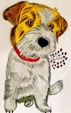 Фото собаку Джек-рассел-терьер карандашом