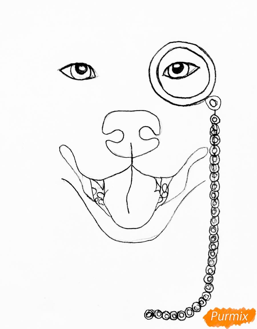 Рисуем собаку породы Сиба Ину с шарфиком цветными карандашами - шаг 2
