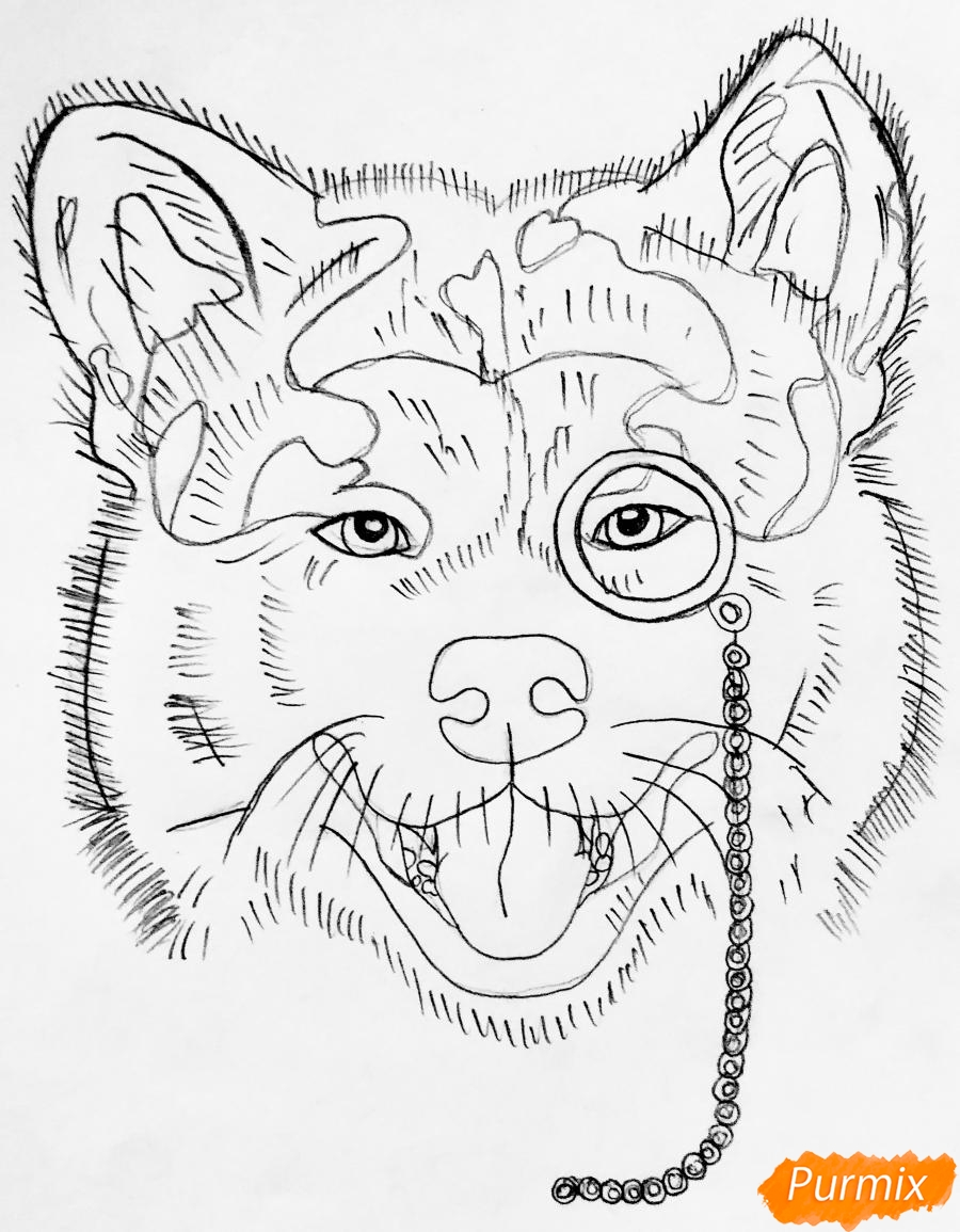 Рисуем собаку породы Сиба Ину с шарфиком цветными карандашами - шаг 4