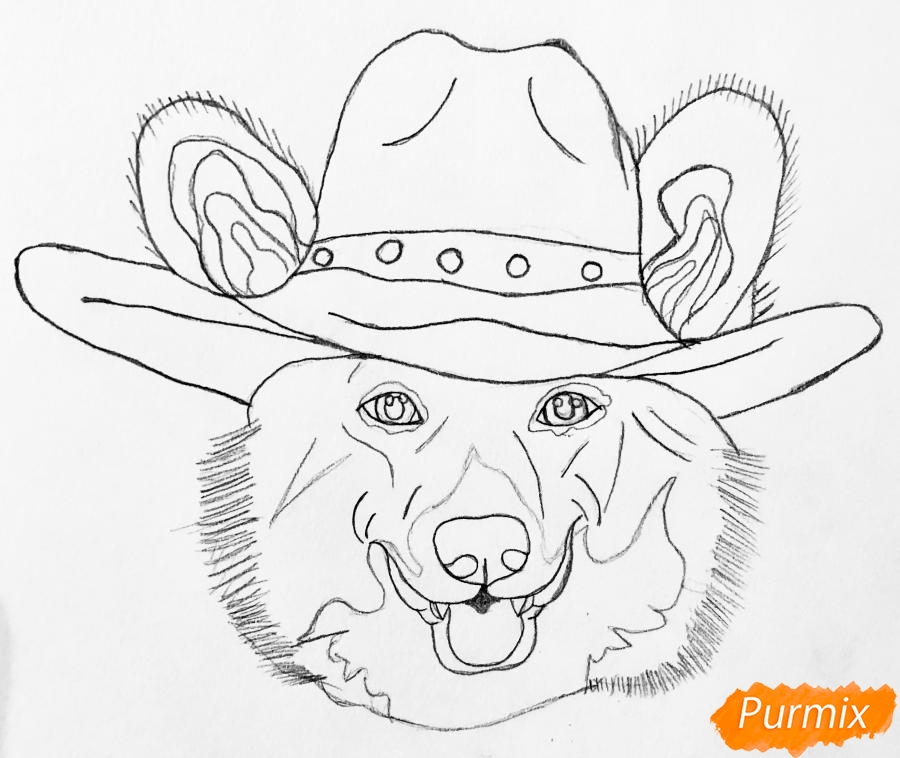 Рисуем собаку породы Вельш-корги пемброк с шляпой цветными карандашами - шаг 3