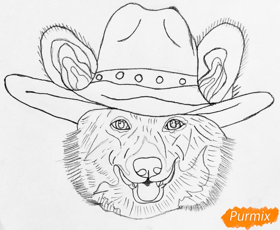 Рисуем собаку породы Вельш-корги пемброк с шляпой цветными карандашами - шаг 4