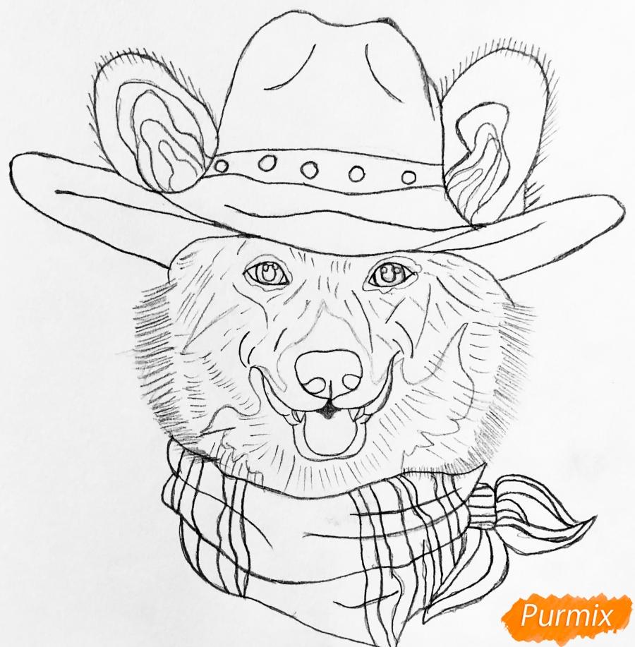 Рисуем собаку породы Вельш-корги пемброк с шляпой цветными карандашами - шаг 5