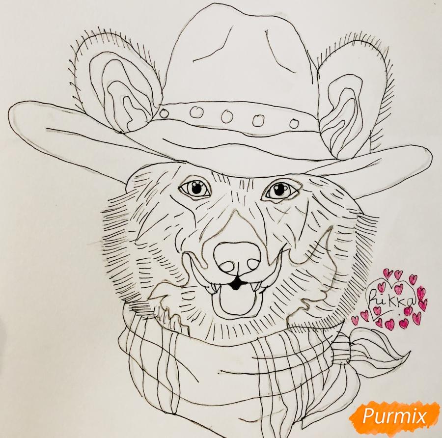Рисуем собаку породы Вельш-корги пемброк с шляпой цветными карандашами - шаг 6