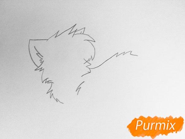 Как просто нарисовать два милых аниме котенка - шаг 2