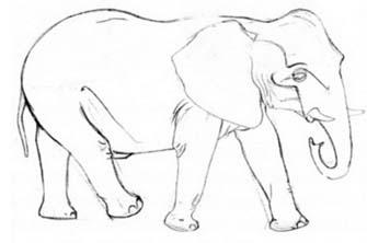 Рисуем слона в движении - шаг 2