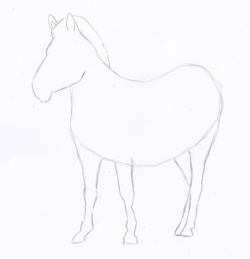 Рисуем зебру - шаг 3