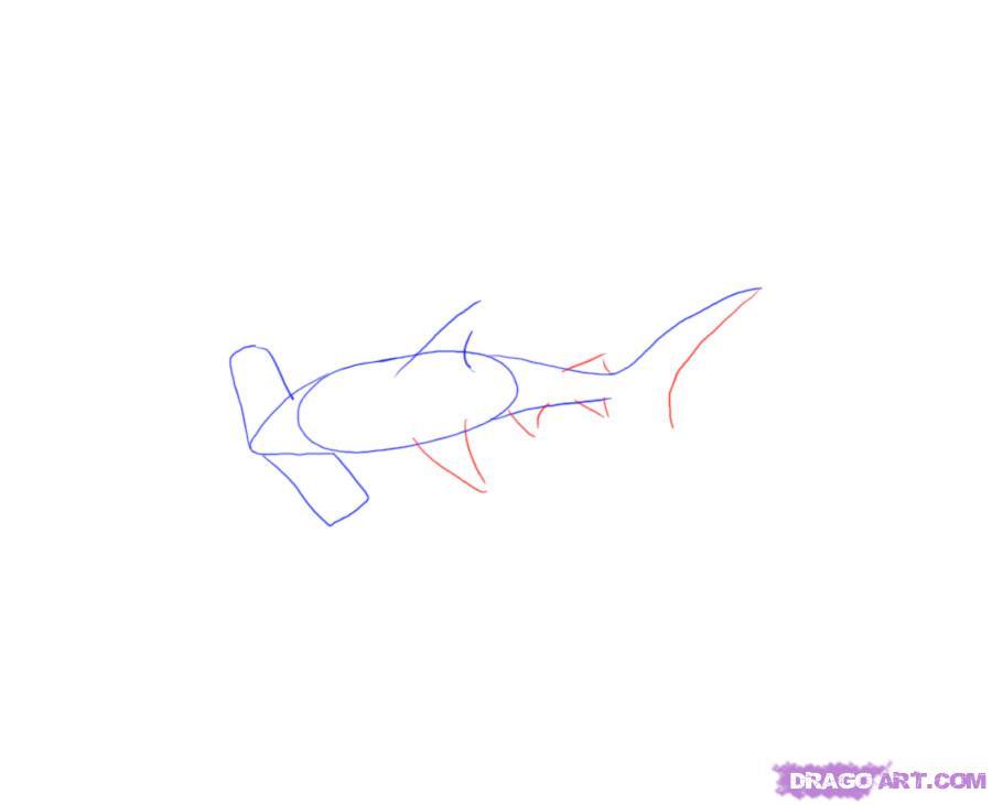 Учимся рисовать акулу-молот - шаг 4