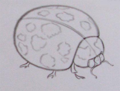 Рисуем божью коровку на листке (подробный урок) - шаг 2