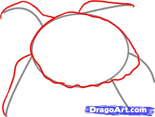 Рисуем черепаху - шаг 2