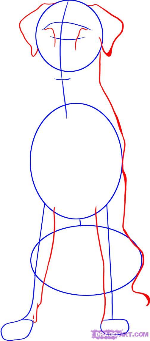 Рисуем собаку далматинца - шаг 2