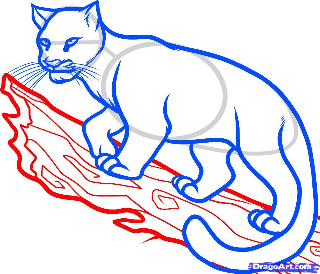 Рисуем дымчатого леопарда на дереве - шаг 7