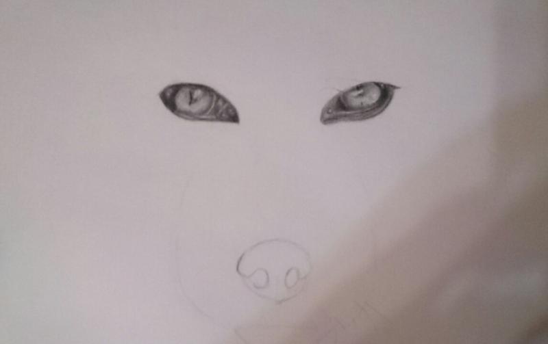 Рисуем голову лисы - шаг 3