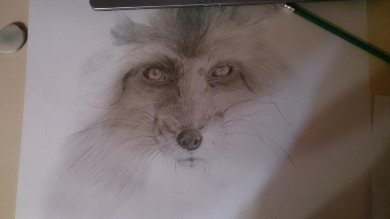 Рисуем голову лисы - шаг 8