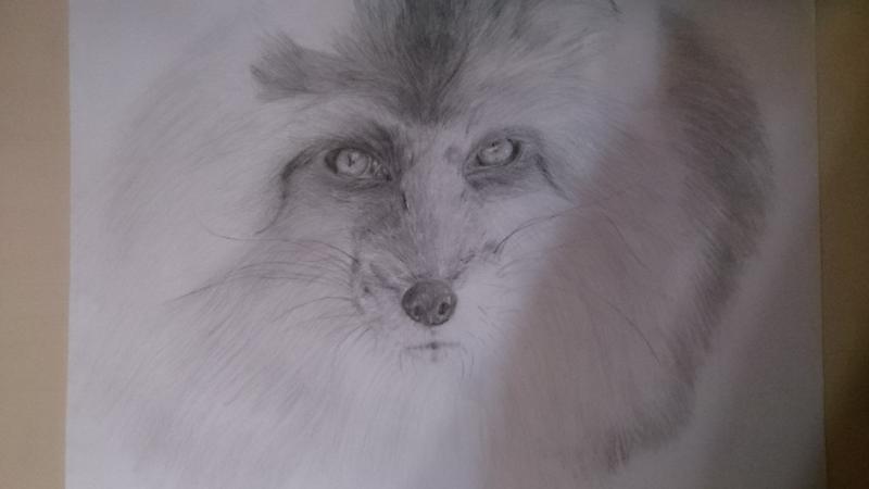 Рисуем голову лисы - шаг 9