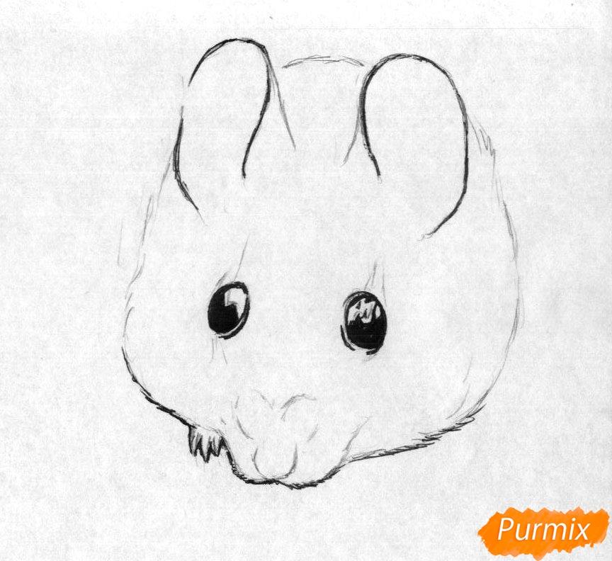 Рисуем иглистую мышь  и ручкой - шаг 2