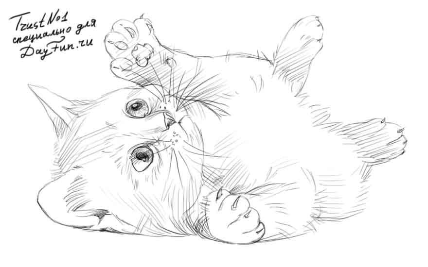 Рисуем играющегося котенка - шаг 5