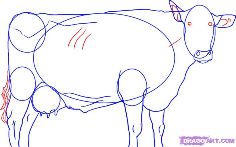 Рисуем корову   для начинающих - шаг 6