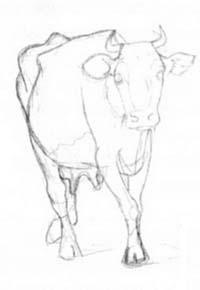 Рисуем корову в движении - шаг 2