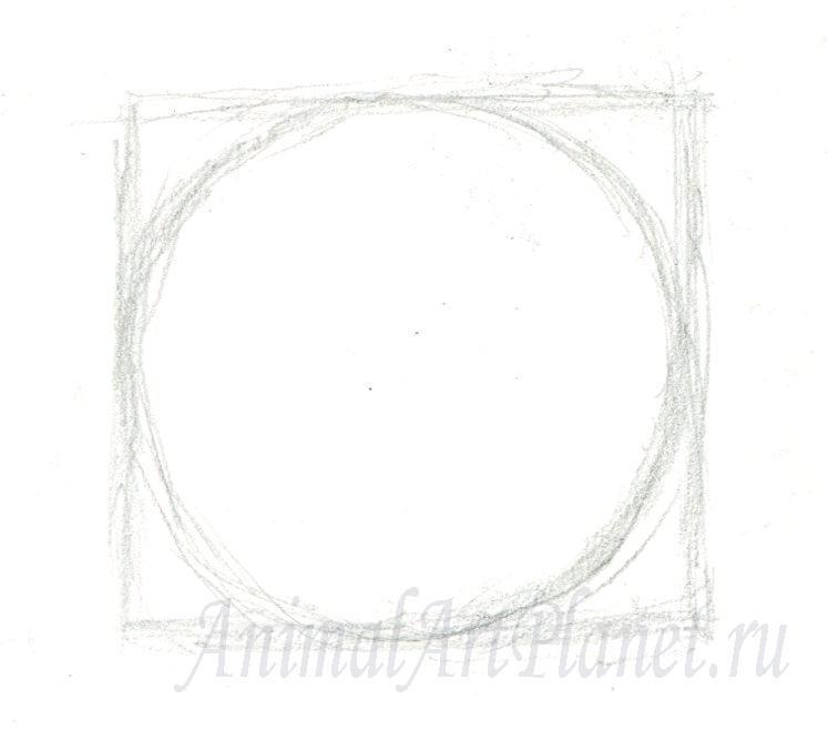 Рисуем кошачий глаз на бумаге