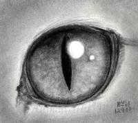 кошачий глаз на бумаге карандашом