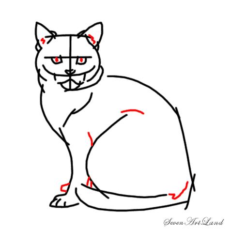 Рисуем кошку породы Американская короткошёрстная