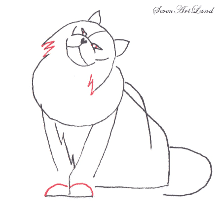 Рисуем кошку породы Турецкая Ангора
