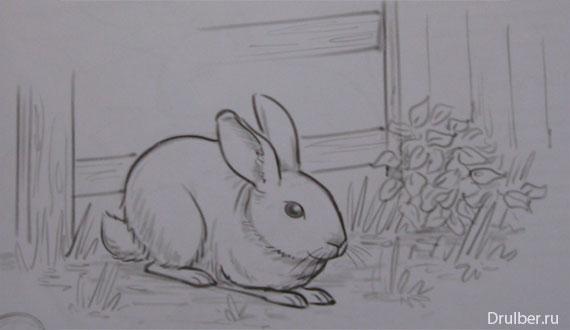 Рисуем кролика карандашами - шаг 4