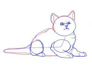 Как просто нарисовать лежащего котенка - шаг 6
