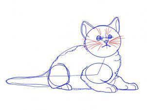 Как просто нарисовать лежащего котенка - шаг 7
