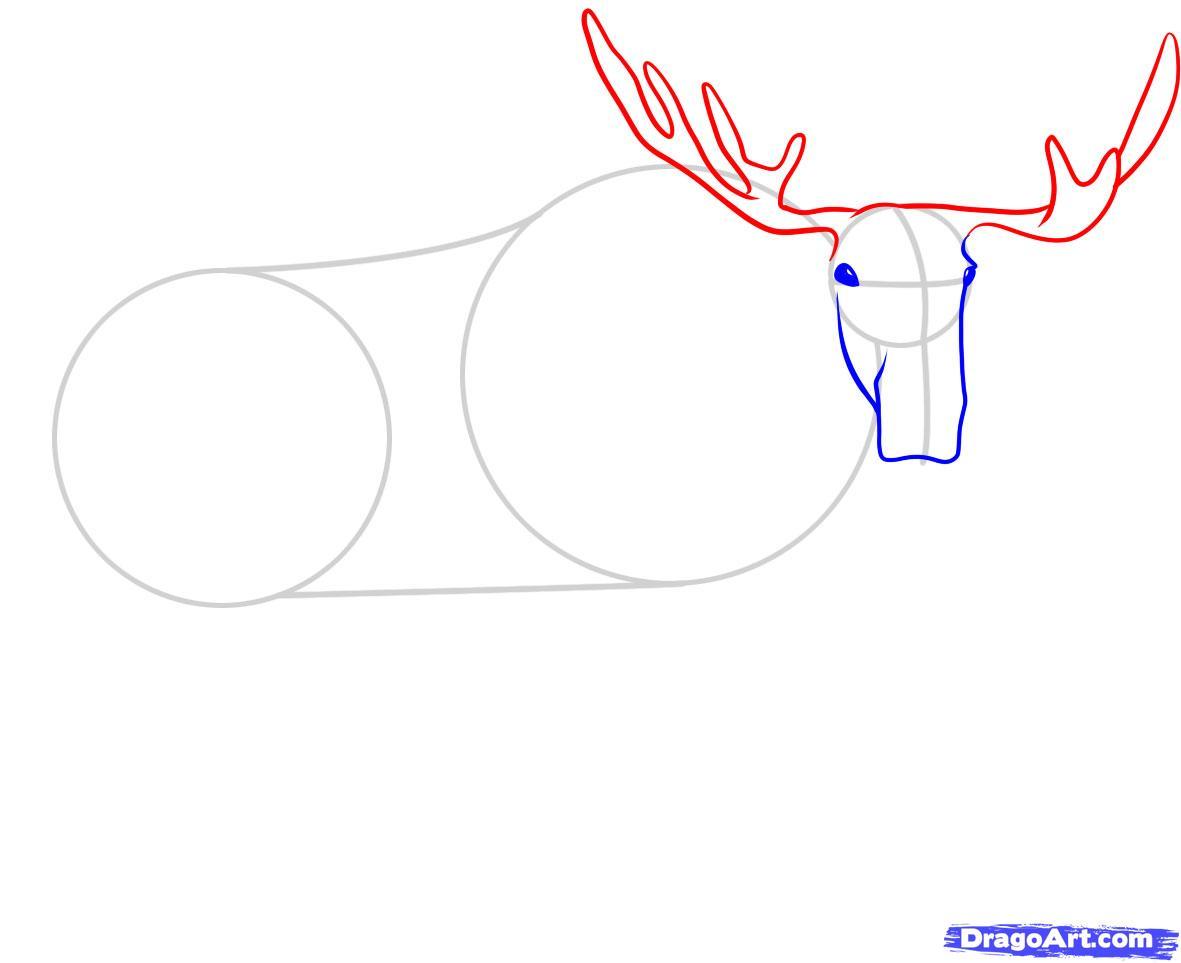 Рисуем лося - шаг 3