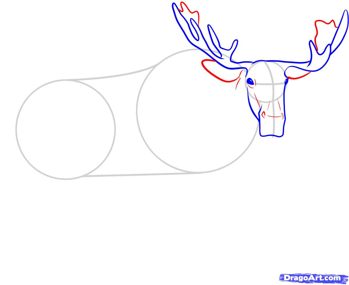 Рисуем лося - шаг 4