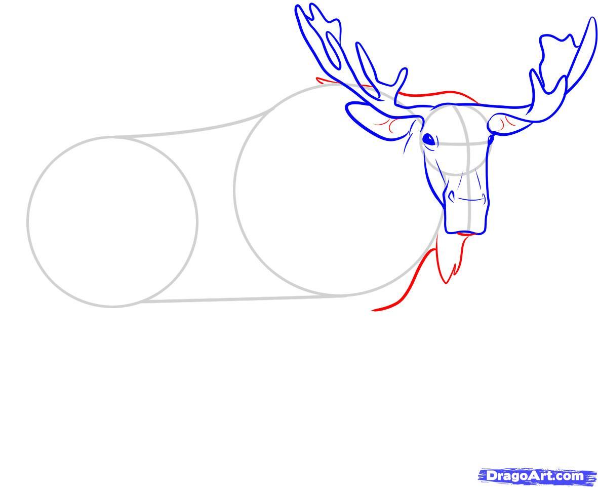 Рисуем лося - шаг 5