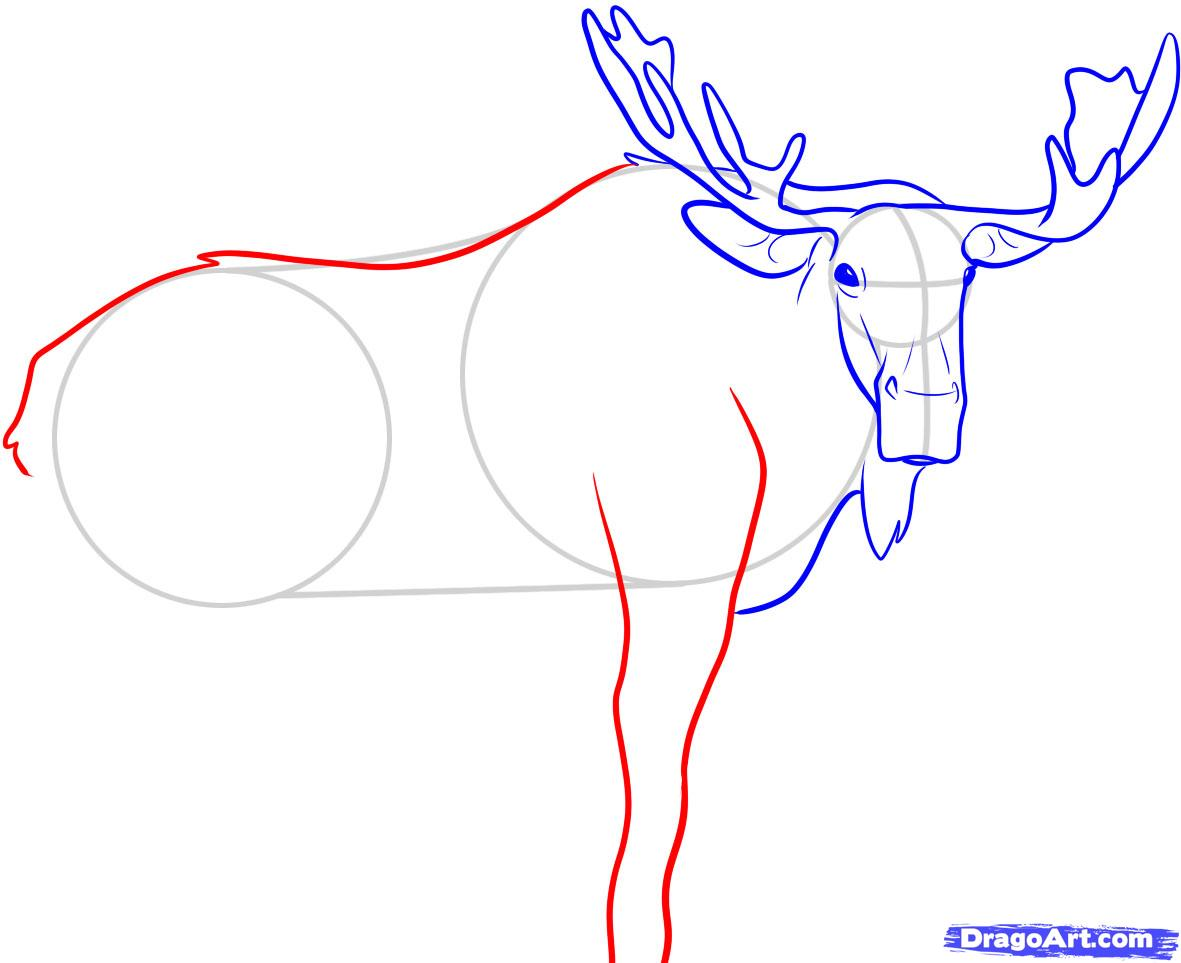 Рисуем лося - шаг 6