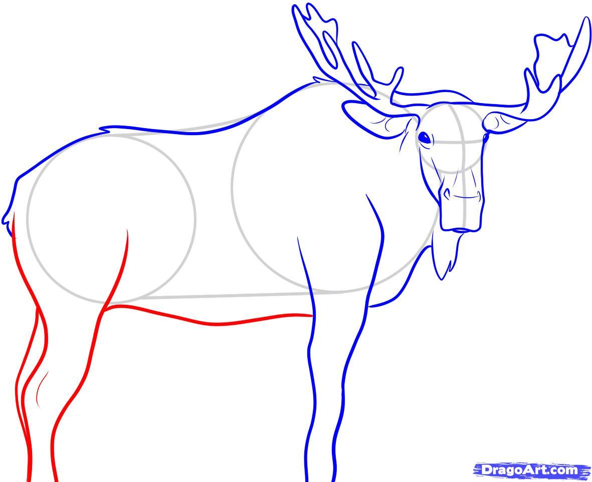 Рисуем лося - шаг 7