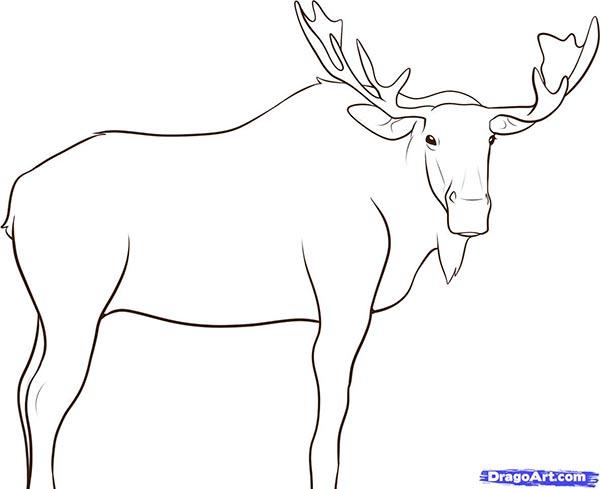 Рисуем лося - шаг 8