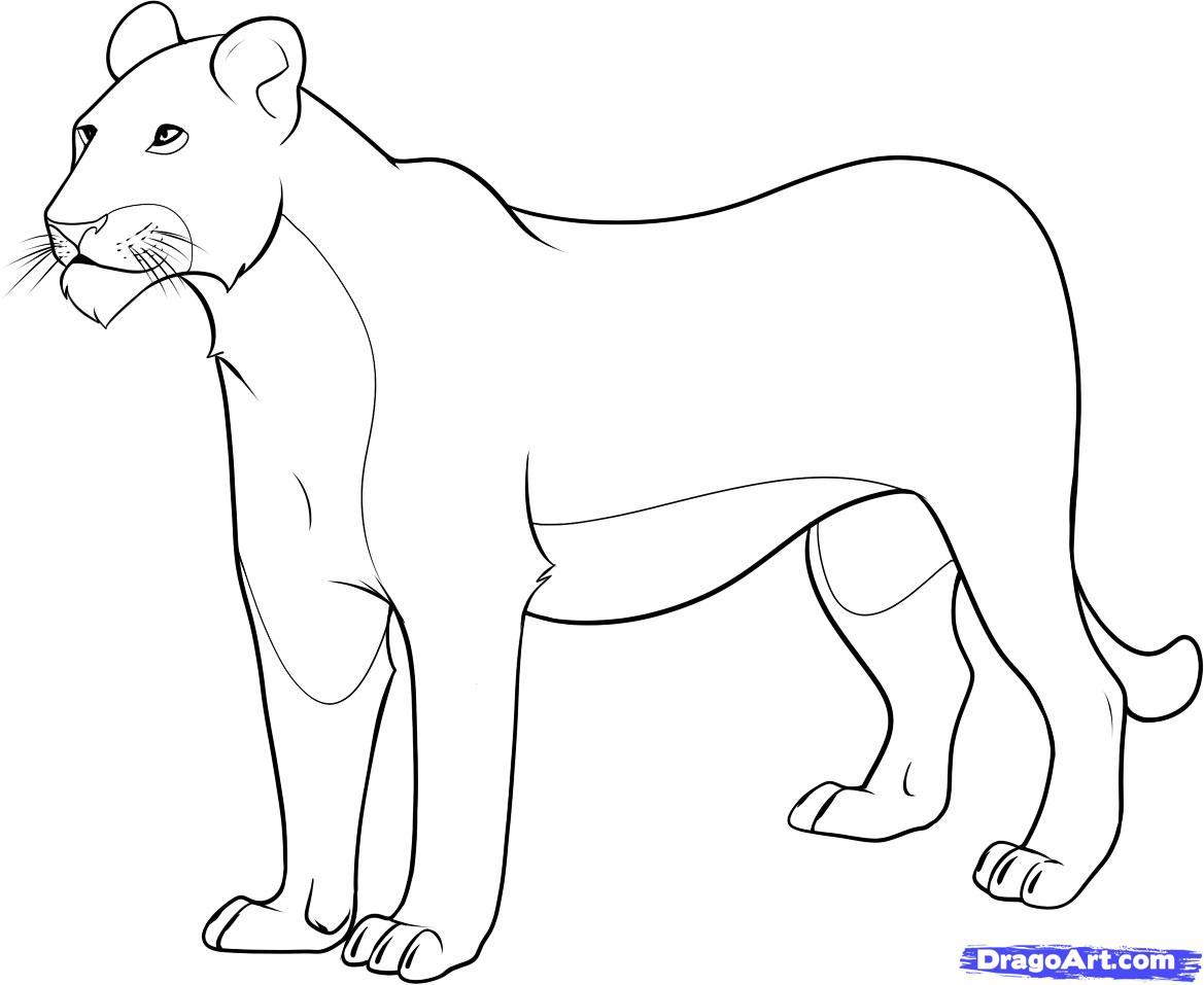 Рисуем львицу - шаг 8