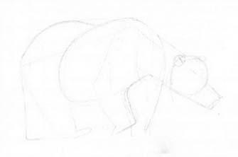 Рисуем медведя в движении