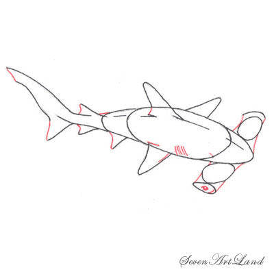Рисуем молотоголовую акулу - шаг 5