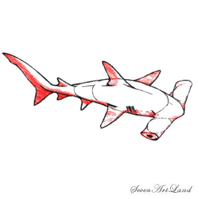 Рисуем молотоголовую акулу - шаг 6