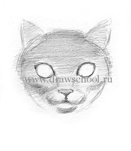 Рисуем мордочку кошки простым - шаг 8