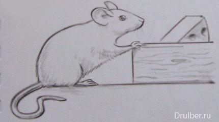 Рисуем мышку - шаг 3