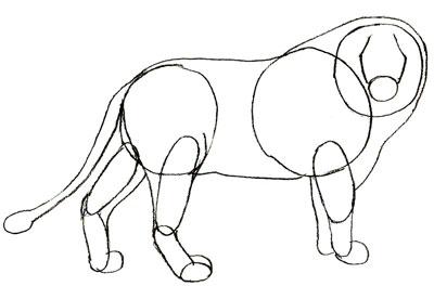 Как просто нарисовать льва - шаг 4