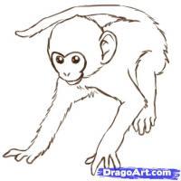 обезьяну карандашом