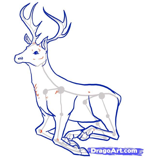 Рисуем оленя - шаг 10