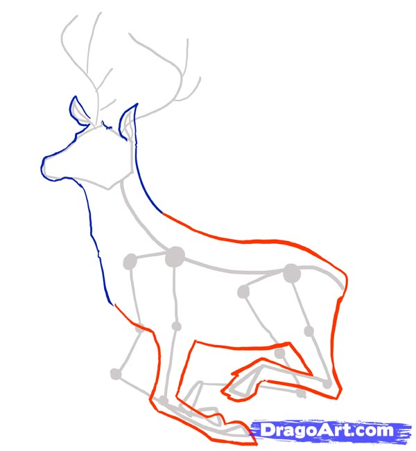 Рисуем оленя - шаг 3