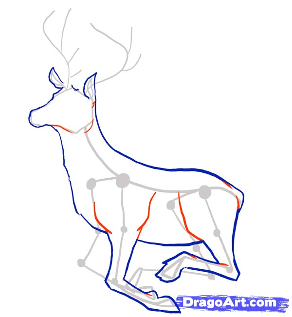 Рисуем оленя - шаг 4