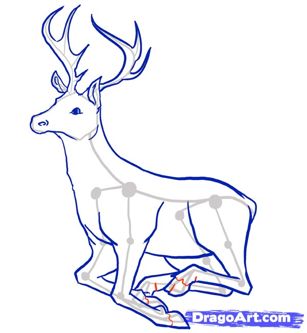 Рисуем оленя - шаг 9