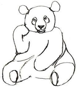 Рисуем сидящую панду - шаг 4