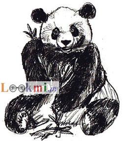 Рисуем сидящую панду - шаг 6