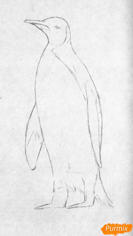 Рисуем пингвина - шаг 1
